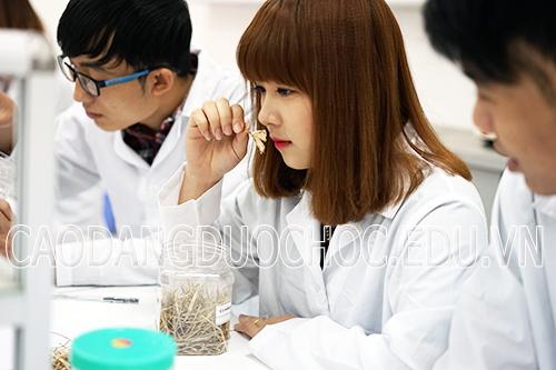 Hồ sơ học Văn bằng 2 Cao đẳng Dược Hà Nội gồm những gì?
