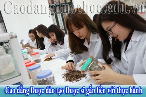 dao-tao-duoc-si-gan-lien-voi-thuc-hanh