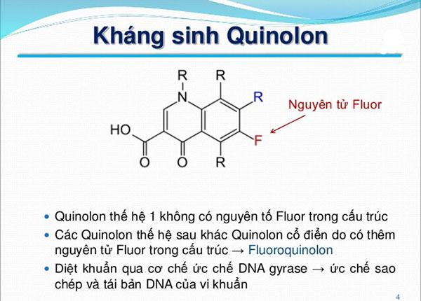 Nhóm kháng sinh Quinolon là nhóm thuốc phổ rộng và hoàn toàn tổng hợp