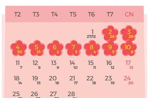 Tết âm lịch năm 2019 ngành Y được nghỉ bao nhiêu ngày?