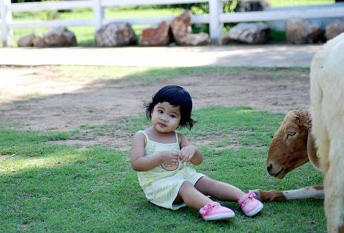 Chiều con, cho xem điện thoại hàng giờ: Bé gái 4 tuổi suýt mù cả hai mắt
