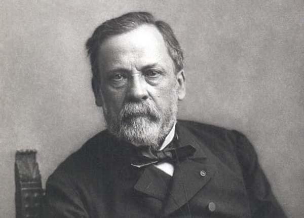 """Louis Pasteur cha đẻ """"ngành vi sinh vật"""" chưa bao giờ học y"""