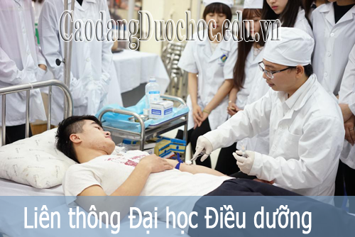 daihocdieuduong