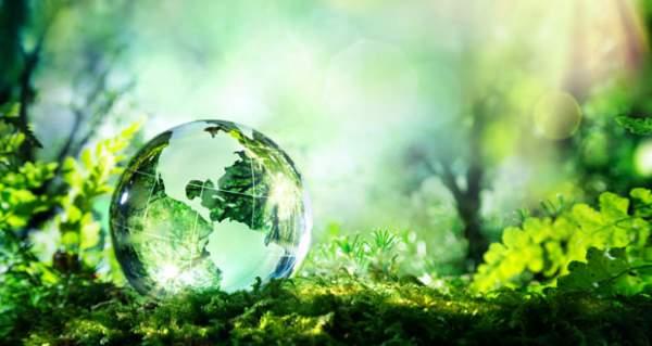 Nature Index là bảng xếp hạng do Tổ chức Nature Reasearch thực hiện