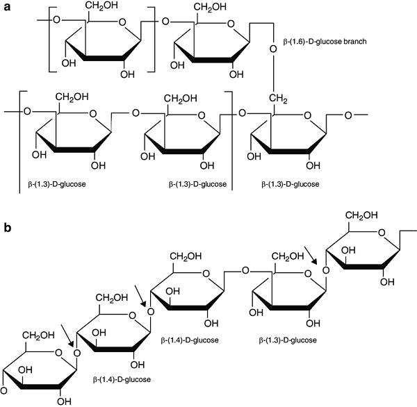 Beta glucan (β-Glucan) là thuốc gì và công dụng ra sao?